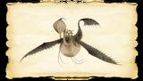 Dragons BOD Scauldron Gallery Image 01-1-