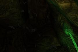 Nietoperz jaskinie