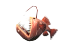 Anglerfishsod