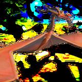 TU-Driftcleaver-Transparent