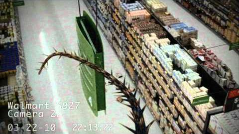 Dragons Caught on Walmart Cameras 3