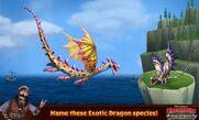 ExoticDragons