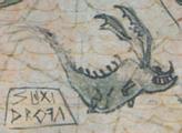 Map dragon 6