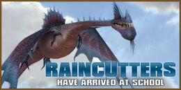 Raincutters-feature