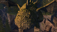 Eeuptodon's face