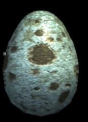 Jajka (5)