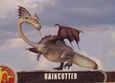 RaincutterTradingCard