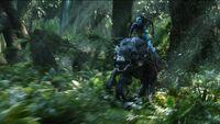 Neytiri Riding
