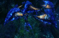 Унидельта-дерево ночью
