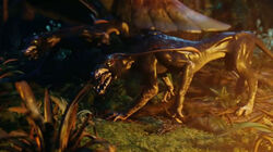 The-Viperwolf-avatar-2009-film-9573872-600-335