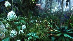 Растения Пандоры Джейк Салли