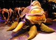 Туртапид цирковая модель