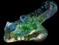 Игра (iOS). Карта