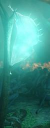 Фонарь-ловушка. Фильм