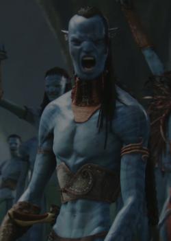 Na'vi portal