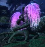 Ночное Дерево Грез