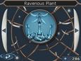 Плотоядное растение