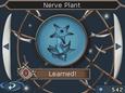 Нейроцвет