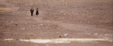 James Bond et Camille marchant dans le désert