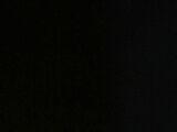 Tsai Chin (actress)