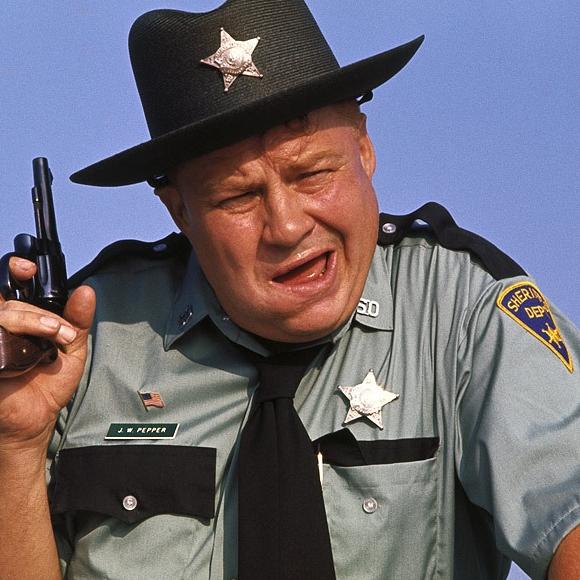 Image result for sheriff jw pepper