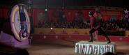 Mischka, Grischka et leur numéro de cirque