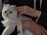 Ernst Stavro Blofeld (Anthony Dawson)