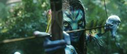 Neytiri Arrow