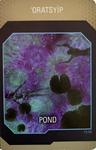 Na'vi Translator Card nr72