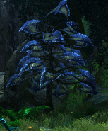 Deltatree