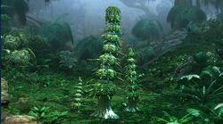 Episoth Baum