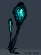 Veinpod Bioluminescence