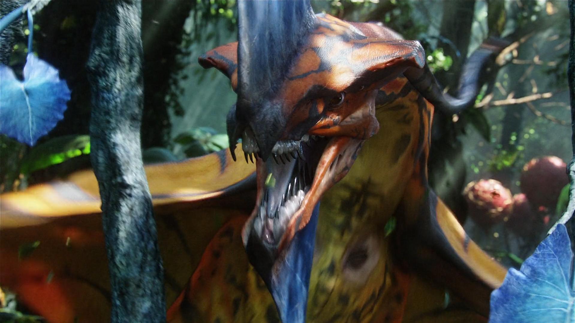 great leonopteryx | avatar wiki | fandom poweredwikia