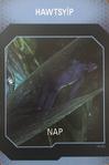 Na'vi Translator Card nr18