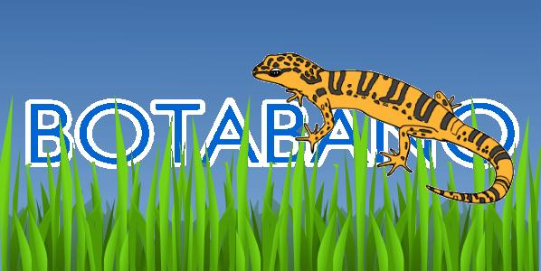 File:BotaBano.png