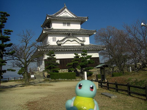 Squirtle in Marugame, Kagawa 6 (Marugame Castle)