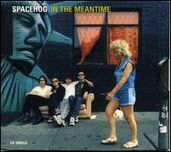 Inthemeantimespacehog