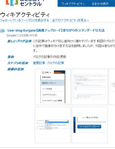 ファイル:ウィキアクティビティ.png