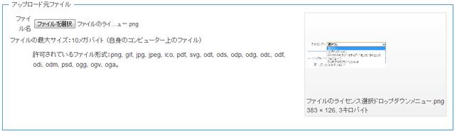 ファイル:アップロードファイル画面でファイル選択後の状態.png