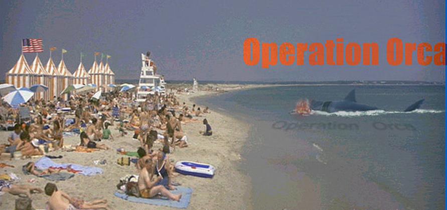 Kintner beach OO banner