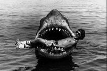 Jaws-its-a-sign