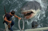Great White Shark from Jaws 8