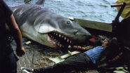 Jaws-bruce-white-shark-giant-mutant-monster3