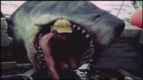 The Shark that Didn't Work