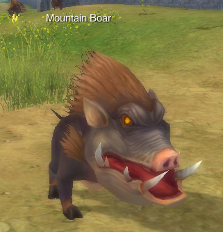 File:MountainBoar.jpg