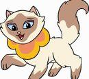 Sagwa Miao