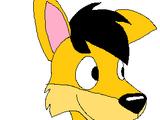 Augie Dingo