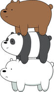 Grizzly, Panda and Ice Bear