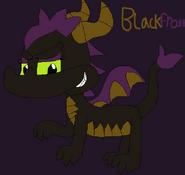 Blackfrost the Dragoness