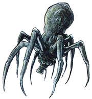 Knobby Spider